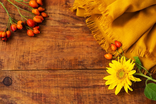 Flat composition with yellow knitted scarf, rosehips berries and sunflower on a wooden table. cozy autumn or the concept of winter rest. place for text, frame, top view, copy space, layout