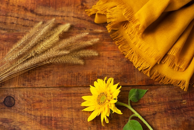 Flat composition with yellow knitted scarf, wheat spikelets and sunflower on a wooden table. cozy autumn or the concept of winter rest. place for text, frame, top view, copy space, layout
