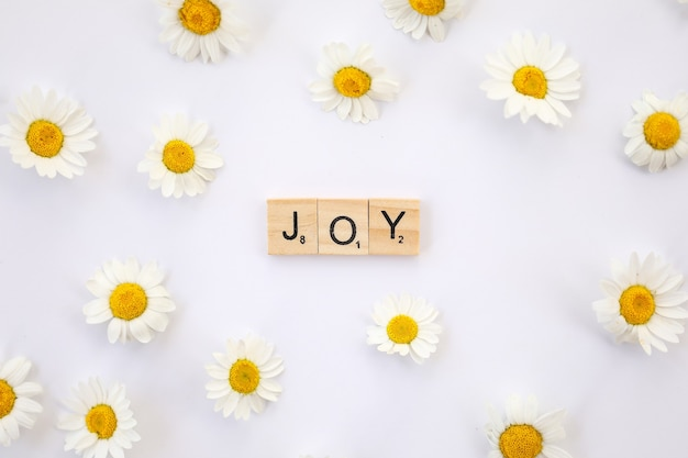 Flat image featuring the text joy in wooden letters on a white surface surrounded by daisies