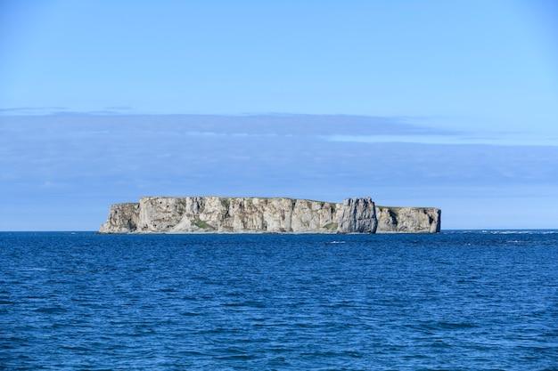 Плоский остров в море. арктический пейзаж в летнее время. архипелаг земля франца юзефа.