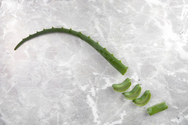 Flat lay aloe vera pieces on marble background