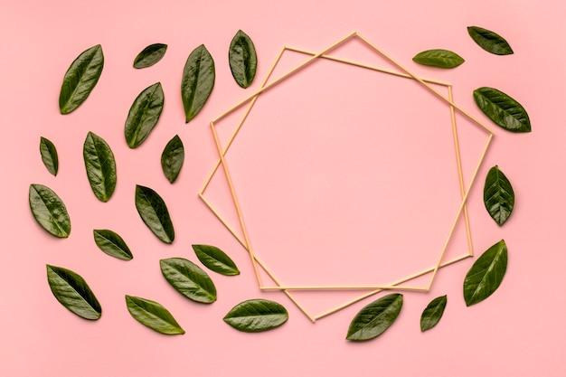 Disposizione piatta di foglie verdi