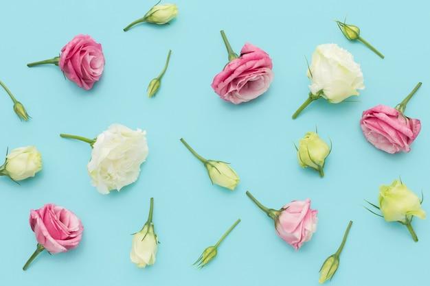 Flat lay arrangement of mini roses