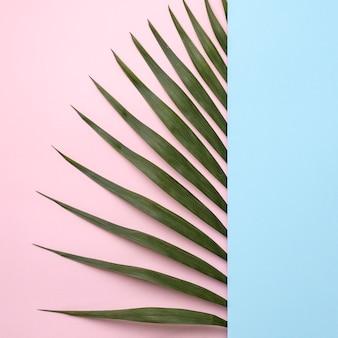 緑の葉のフラットレイアレンジメント