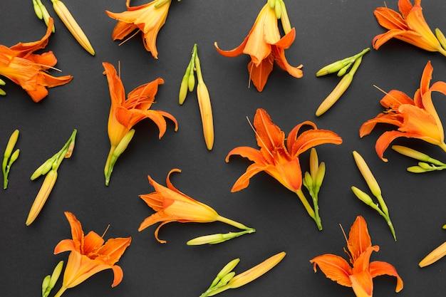 オレンジ色のユリのフラットレイアウトの配置