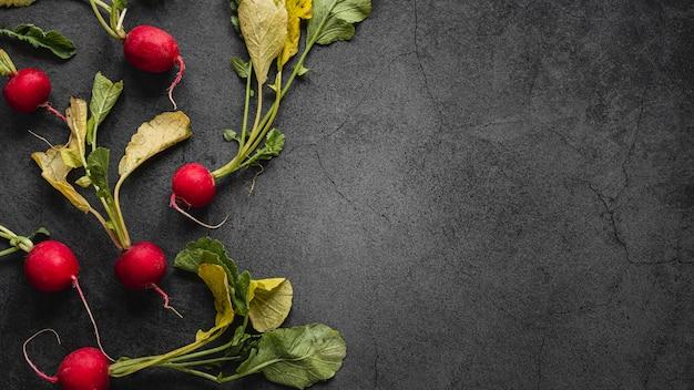 Disposizione piatta di ravanelli con foglie copia spazio