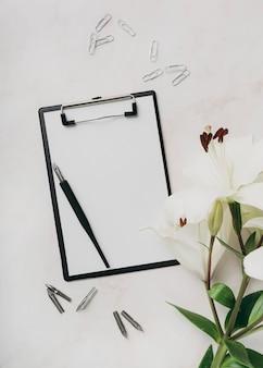 Disposizione piatta con appunti e penna
