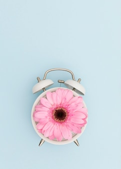 Flat lay arrangement with pink daisy and clock