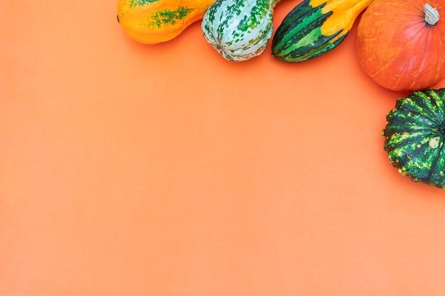 주황색 배경에 장식용 호박의 복사 공간이 있는 평평한 가을 구성