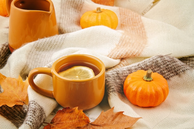 Flat lay autumn composition with fall leaves, hot cup of tea and a warm woolen scarf or plaid