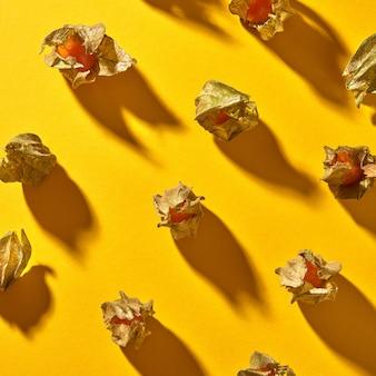 熟した黄色いサイサリス植物とフラットレイ秋の構成