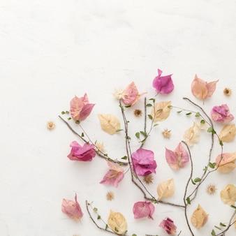 Lay piatto di fiori autunnali con copia spazio