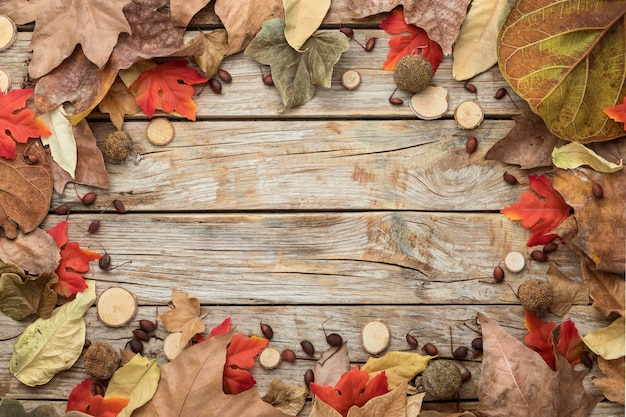 Flat lay of autumn leaves frame with copy space
