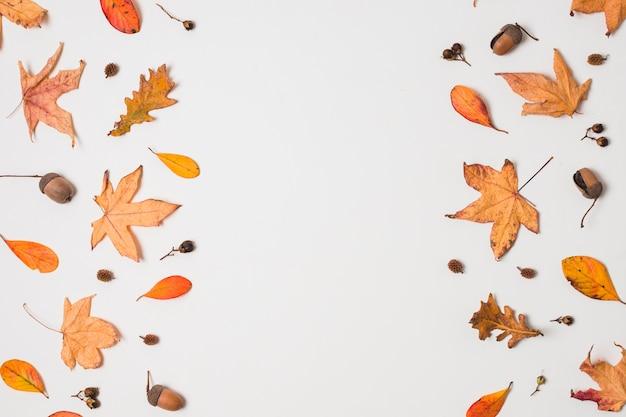 Плоская планировка осенних листьев