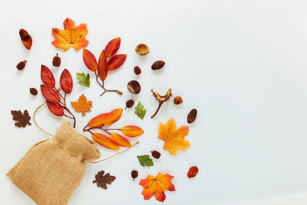 Flat lay autumn leaves on white background