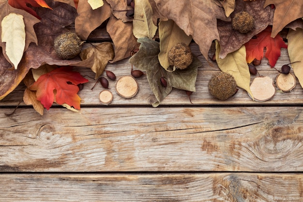 Flat lay of autumn leaves with copy space