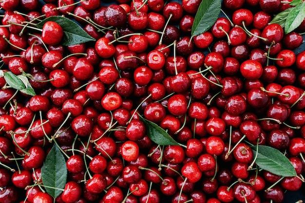 신선한 붉은 달콤한 체리와 녹색 잎 더미가 있는 평평한 배경. 에코 농장 식품 재배. 건강한 식생활 라이프 스타일 개념입니다. 고품질 사진