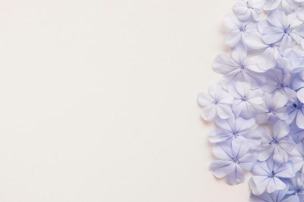Flat lay of beautful floral arrangement