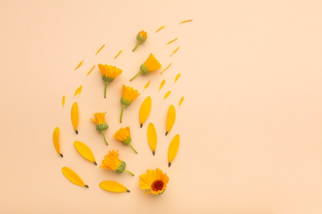 フラットレイ美しい花のアレンジメント