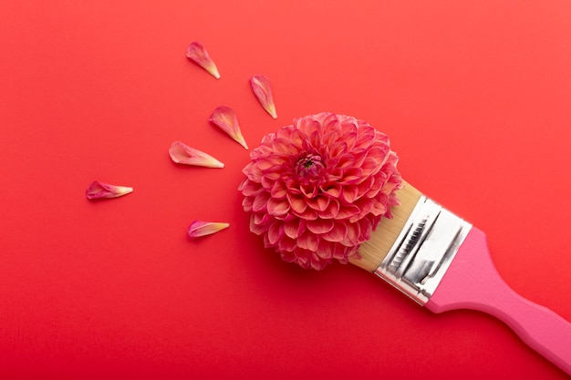 평평한 누워 아름다운 꽃 모음