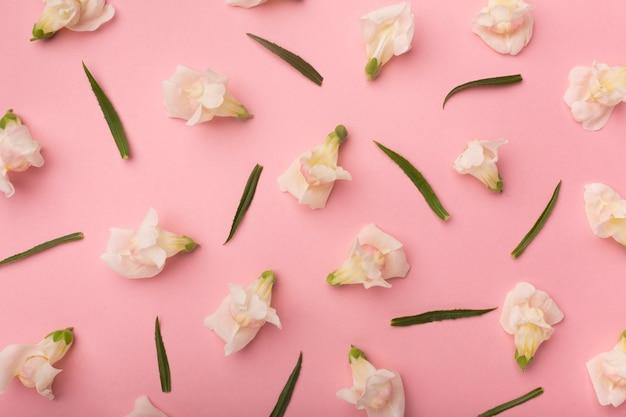 Bella composizione piatta di fiori