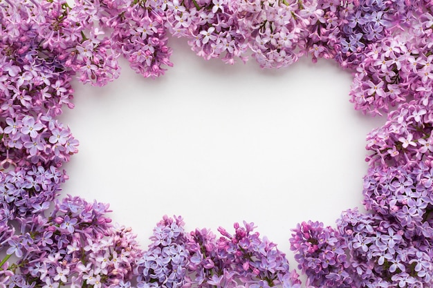 Flat lay of beautiful lilac frame concept