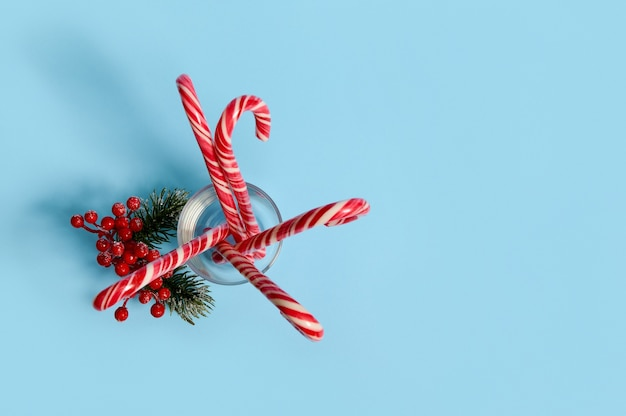 Flat lay of beautiful minimalistic simple composition with christmas candy canes in transparent glass and snowy branch of pine with red berries, holly, on blue background with copy space for ad