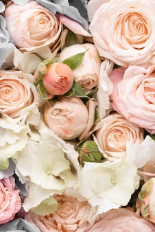Flat lay of beautifully bloomed colorful rose flowers