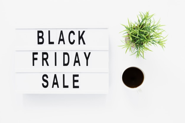 Flat lay black friday light box with plant