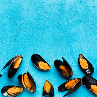 Flat-lay boiled mussels with copyspace