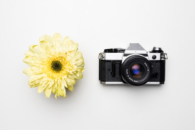 Flat lay of camera next to flower