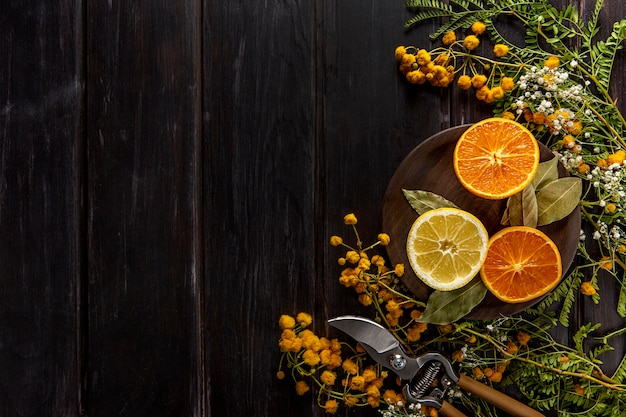 Flat lay of citrus fruits with copy space