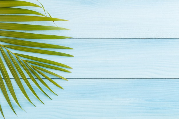 Flat lay coconut leaves on blue wooden floor, top view and copy space, summer concept