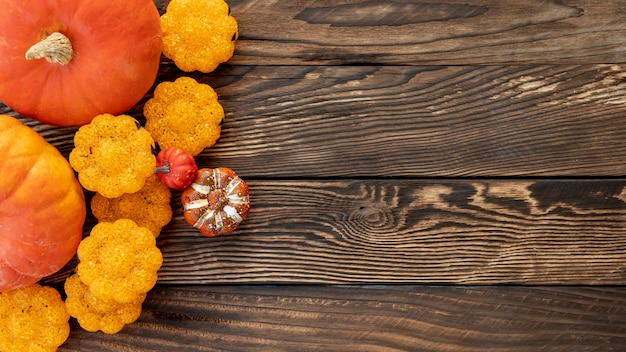 Flat lay colourful pumpkins on wooden background