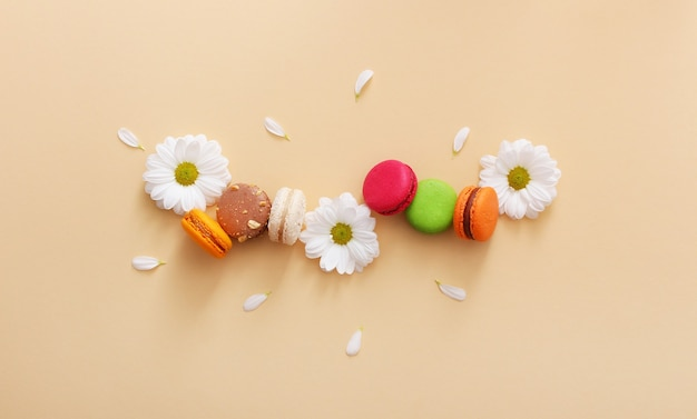 Flat lay composition of colorful french macaroons,white flowers and petals