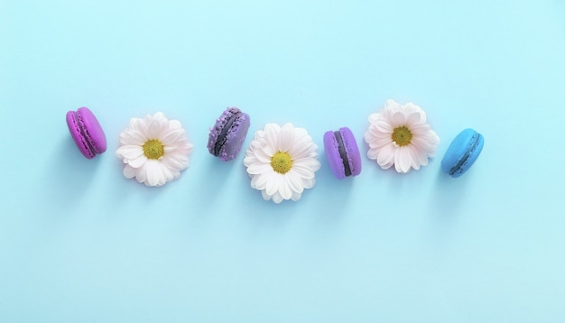 Flat lay composition of colorful french macaroons and white flowers