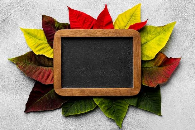 빈 칠판 잎의 평면 위치 구성