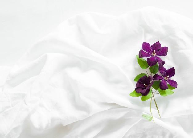 Плоские лежал композиция из фиолетового клематиса цветы и листья на фоне белой ткани. вид сверху.
