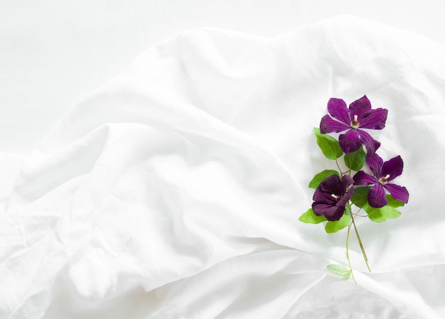 Flat lay composition of purple clematis flowers and leaves on white textile background. top view.
