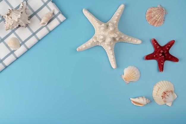 Плоская композиция с красивыми морскими звездами и морскими раковинами на синем фоне, место для текста, высокое разрешение