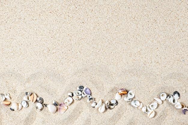 カラフルな貝殻と珊瑚が砂の上にあるフラットレイ構成。旅行と休暇のコンセプト