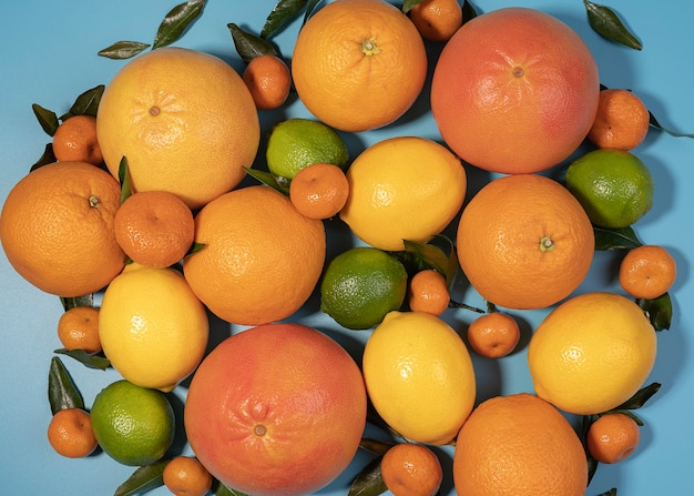 さまざまな柑橘系の果物の背景を持つフラットレイ構成