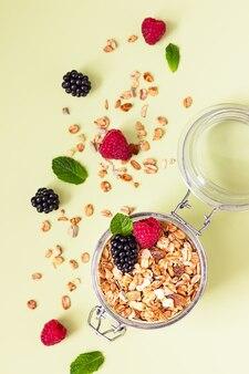 Плоская композиция с мюсли, малиной, ежевикой и мятой. концепция здорового питания.