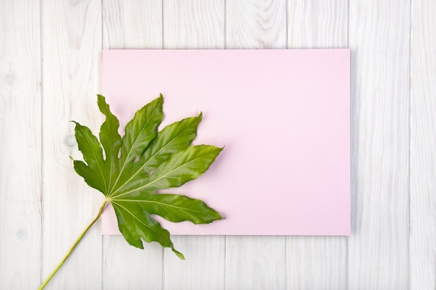 Flat lay composition with pink board and green leaves on white wooden table
