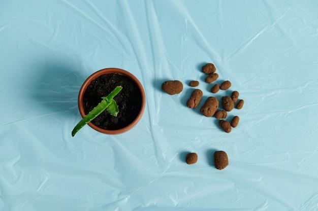 散在する膨張した粘土、アロエの花が付いている土鍋の隣の透明なフィルムの植物のための排水の平らな敷設の構成