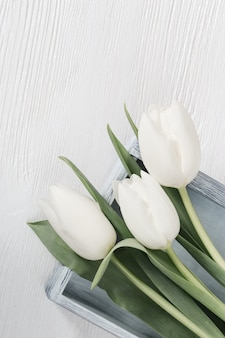 Flat lay composition with white tulips on wooden surface table. spring flowers for womans or mothers day.