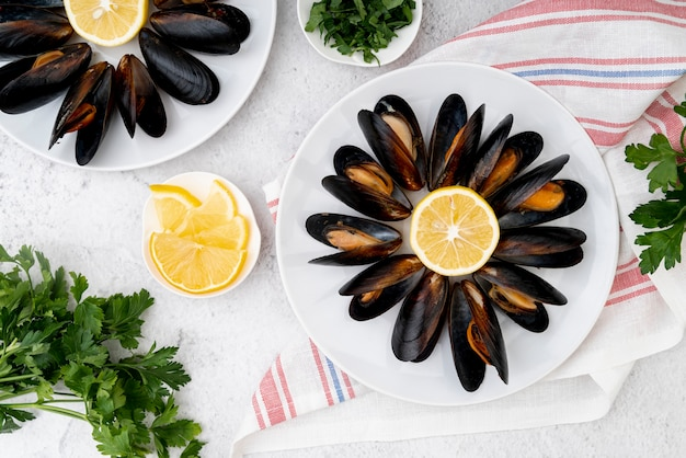 Flat lay cooked mussels on plate