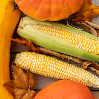 Flat lay corns and pumpkins