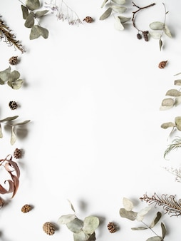 Flat lay creative natural frame background of winter dry plants parts
