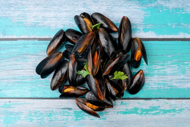 Flat lay delicious mussel shells